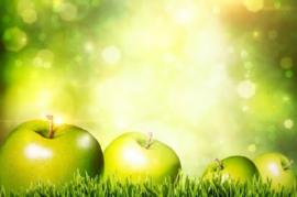Jolly's Green Apple
