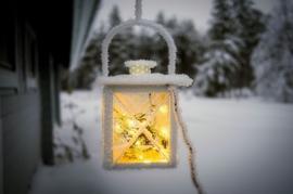 Wintery Glow Y.Type