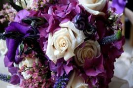 Violets & Roses D.Type