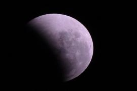 Pink Eclipse BB&W.Type