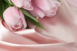 Pink Silky Tule Y.Type