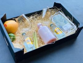 APERO PINK GIN BOX 'Hentho' + Glazen