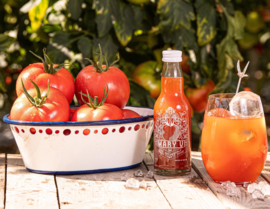 MARY V  - TOMATO MOCKTAIL PAKKET 24x200ml