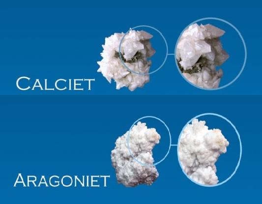 Vergelijking calciet en aragoniet