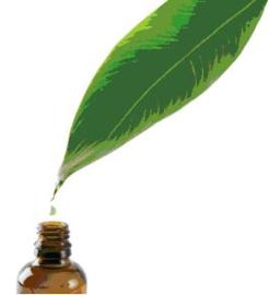 Pepermunt Hydrolaat - bio - 100 ml