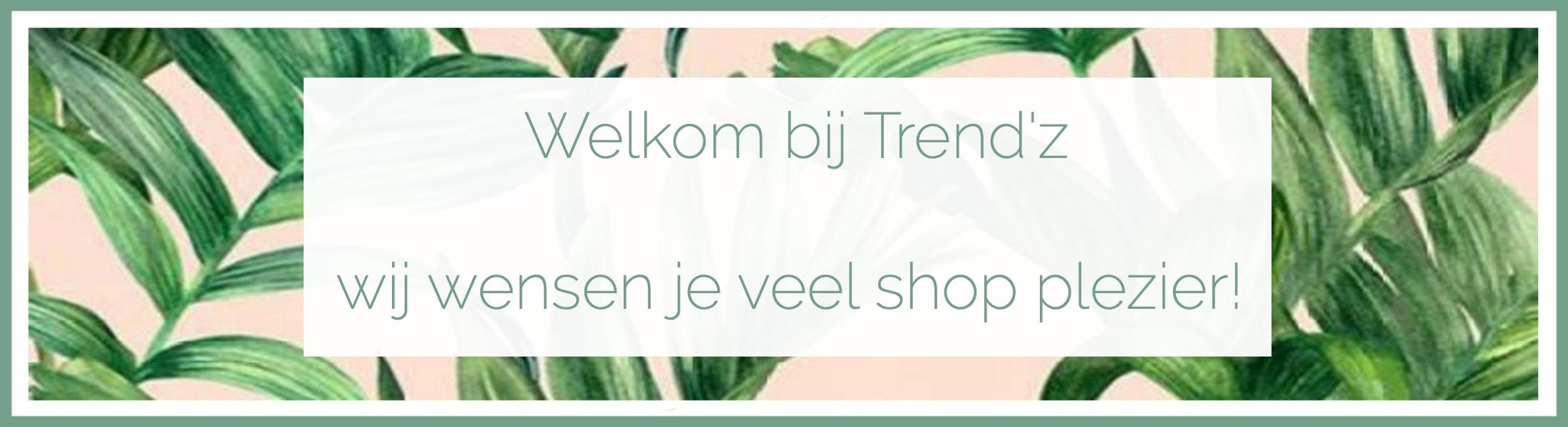 banner shopplezier