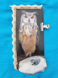Owl & oyster