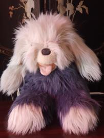Manny de hond