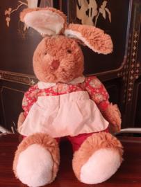 Lisa het konijn