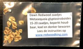 Sachet de graines de Métaséquoia (Metasequoia glyptostroboides)
