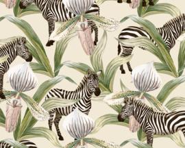 Cadeaupapier Zebra