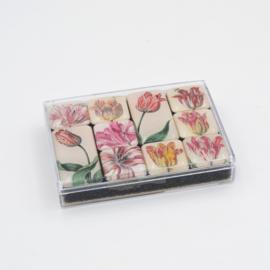 Mini magneetset Historische Tulpen
