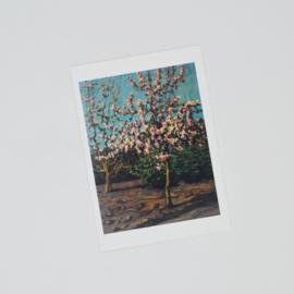 Kunstkaart Appelbloesem