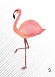 Flamingo woonkaart