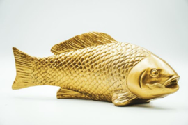 Housevitamin golden fish