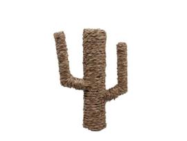 Deco cactus zeegras
