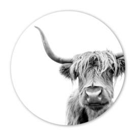 Wooncirkel Schotse hooglander zwart/wit  - 30cm