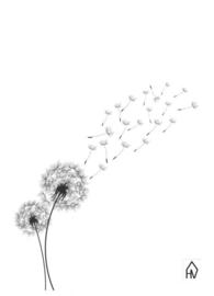 Dandelion woonkaart
