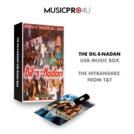 DIL E NADAN USB MUSIC BOX