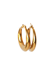 Creolen glad stainless steel goldplated 4 cm
