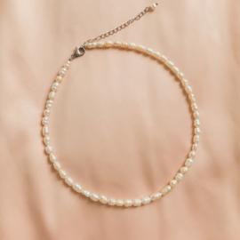 Just pearls - Choker