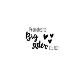 Strijkapplicatie | Ik word grote zus!