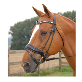 Dy'on hoofdstel dressage collectie
