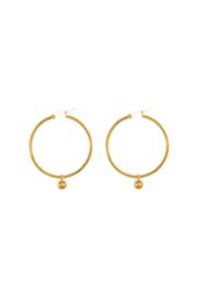 Golden trendy hoops