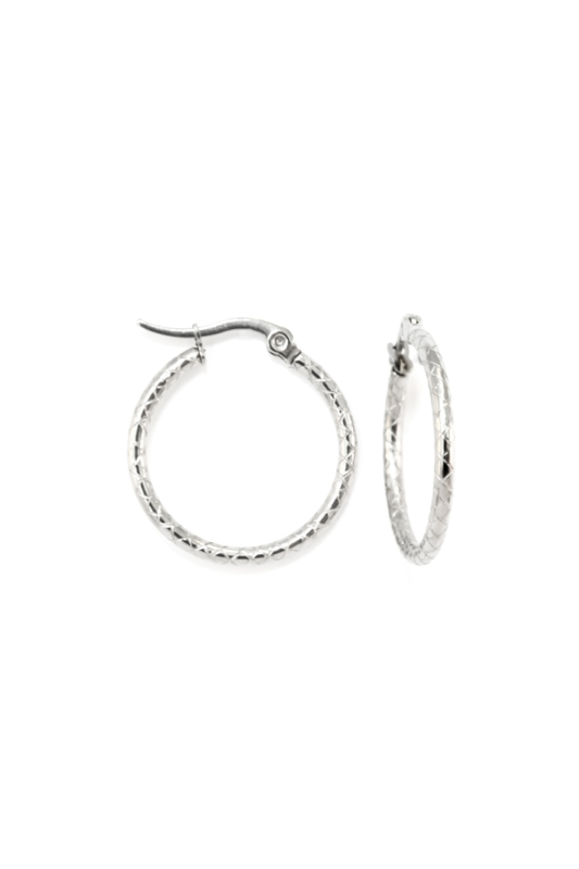 Silver snake hoops