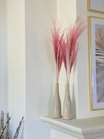 Pampasgras roze