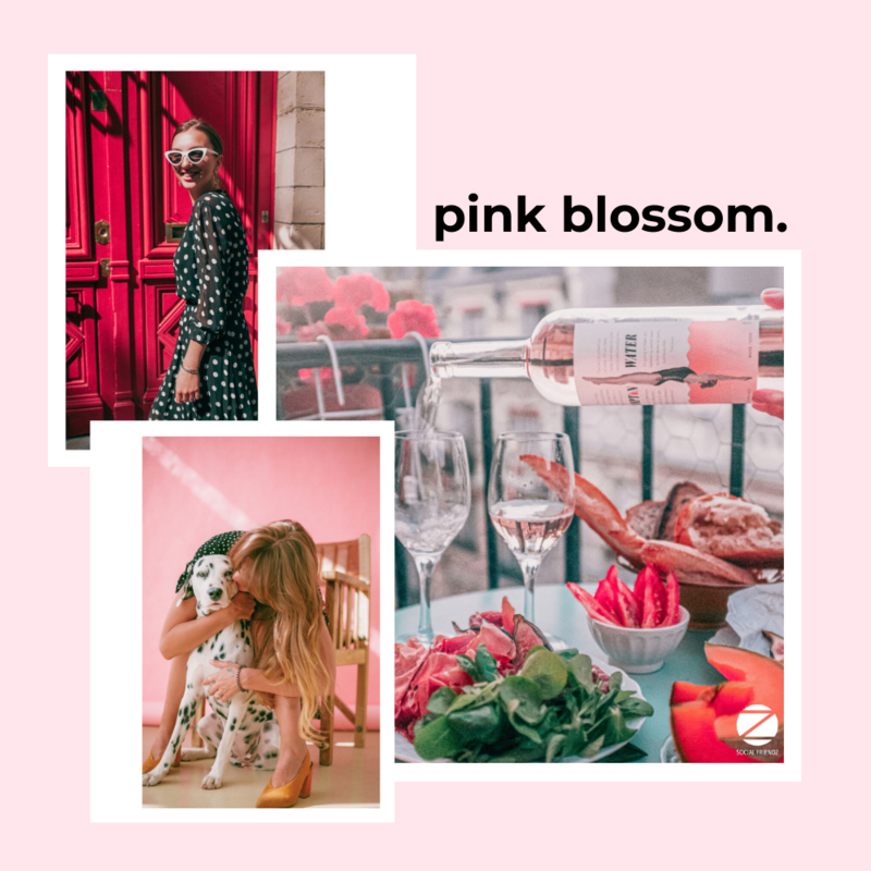 Preset Social Friendz Pink Blossom