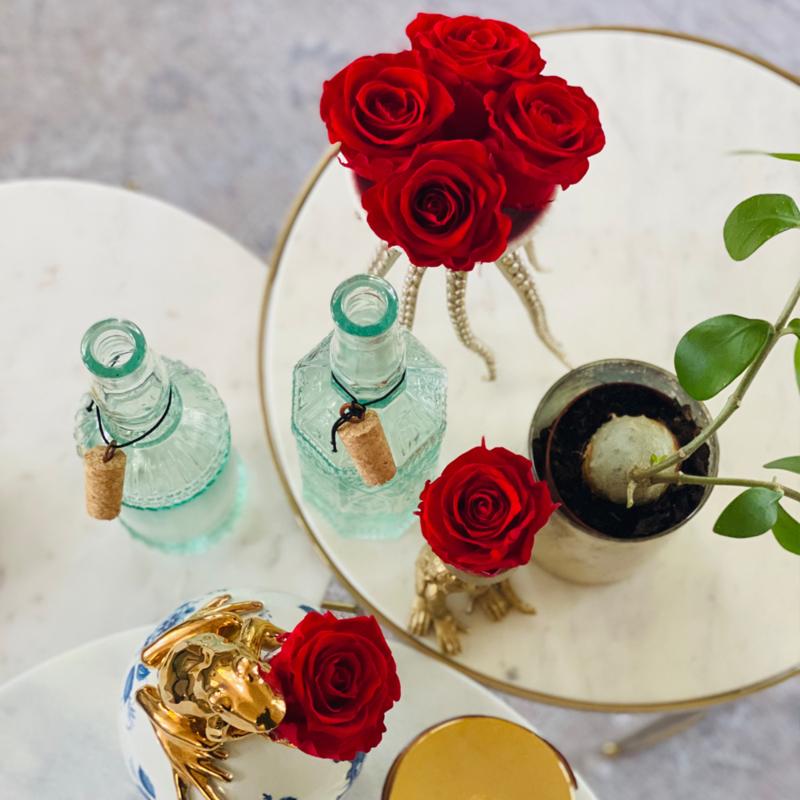Huis Vol Bloemen - Geprepareerde rozen (6x)