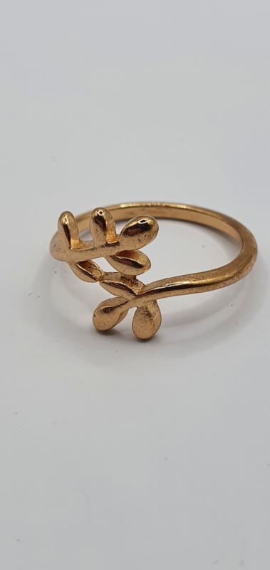 Goudkleurige ring
