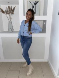 Vest-trui luchtblauw - Esmee