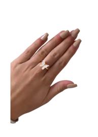 Ring vlinder wit