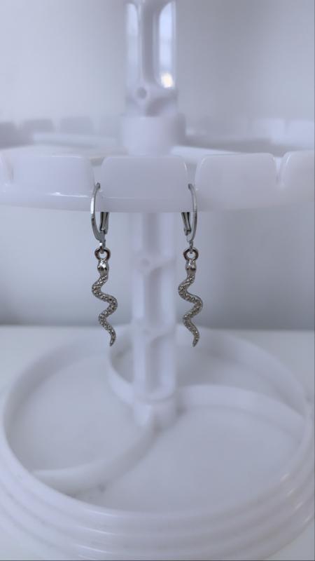 Zilveren oorbellen slangen
