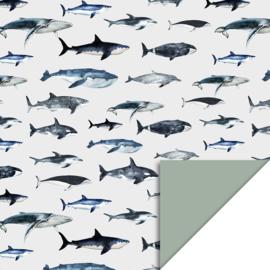 Inpakpapier Sea Life - Blue/Green dubbelzijdig - 30 cm