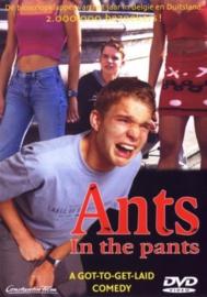 Ants in the pants (dvd tweedehands film)