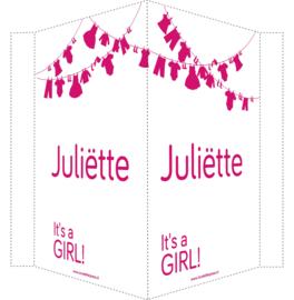 Geboortebord/ raambord | Waslijn It's a girl | naam | fuchsia roze vanaf