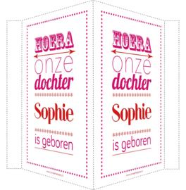 Geboortebord/ raambord | Hoera dochter geboren | naam| roze/rood vanaf