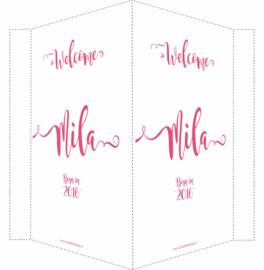 Geboortebord/ raambord | Welcome dochter (handlettering) | naam| roze vanaf
