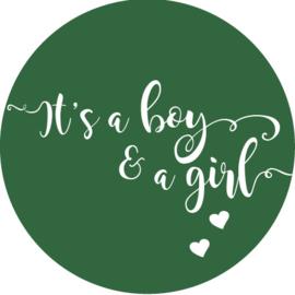 Geboorte sluitzegels   Tweeling   It's a boy & girl   donkergroen