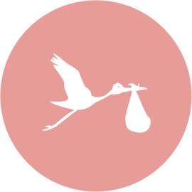Geboorte sluitzegels | Hart | oudroze