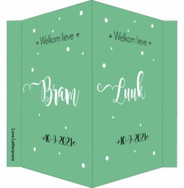 Geboortebord/ raambord | tweeling |  handlettering | zoons | groen vanaf