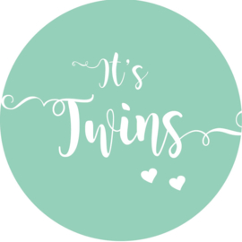 eboorte sluitzegels | Tweeling |  It's twins | mint