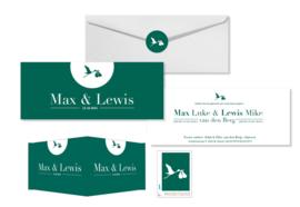 Geboortekaartje | letterpress  | 8 x 20 cm | 2 kleuren | 'tweeling ooievaar' vanaf