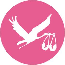 Geboorte sluitzegels | Tweeling | Ooievaar meisjes | fuchsia roze