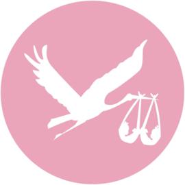 Geboorte sluitzegels | Tweeling | Ooievaar meisjes | licht roze