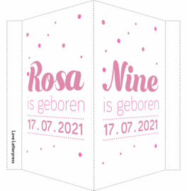 Geboortebord/ raambord | Tweeling | confetti | dochters | roze vanaf
