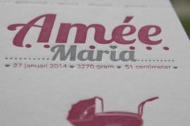 Geboortekaartje | letterpress  | 11 x 17 cm | 2 kleuren | 'Vintage kinderwagen| Amée' vanaf